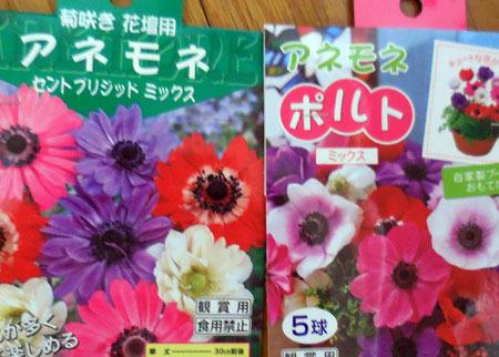 blogDSCN5516.jpg